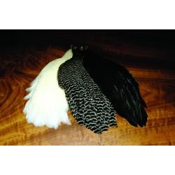 Cuellos de gallina Metz