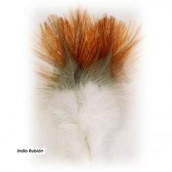 indio-de-gallo-leones