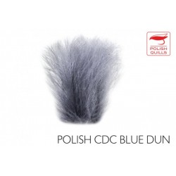 Plumas de culo de pato Polish CDC