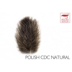 Plumas de culo de pato Polish 0,50 grs